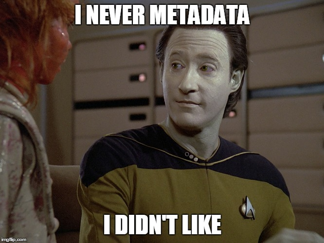 Metadata is vital for SEO.